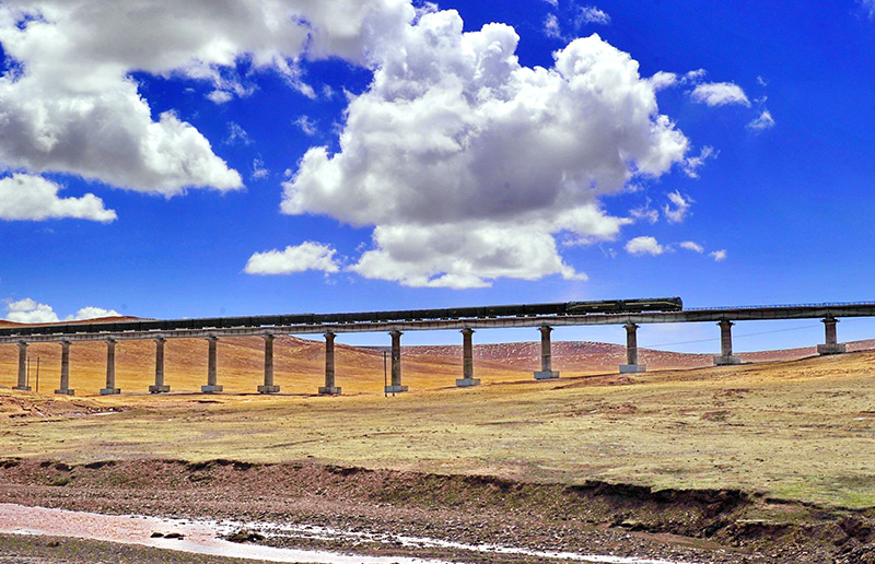 Qinghai Tibet Train